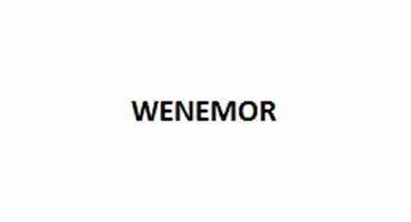 wenemor_logo